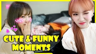 IZONE - CUTE & FUNNY MOMENTS | PART 1 (아이즈원)