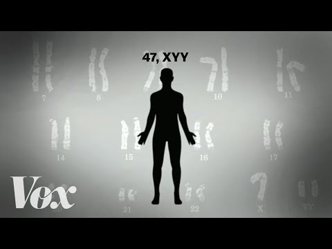 "The myth of the ""supermale"" and the extra Y chromosome"