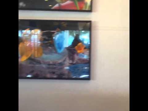Museo Piedra Larimar en Barahona Super Semana Santa 2015