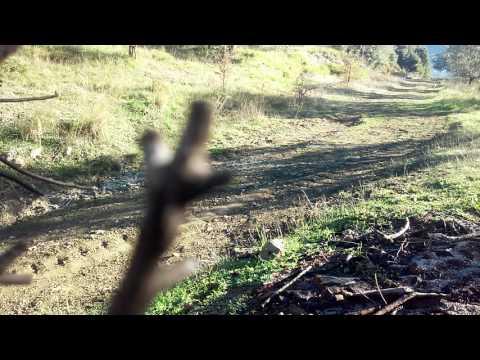 Κυνηγι λαγου ειχε αλεξισφαιρο γιλεκο 😃😃😃🚔