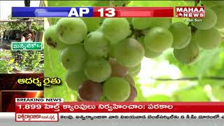 Farmer in Prakasam Attracts With Grapes Cultivation in His Garden