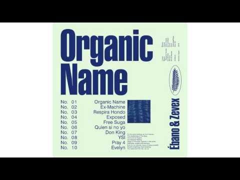 Organic Name - 07.DON KING