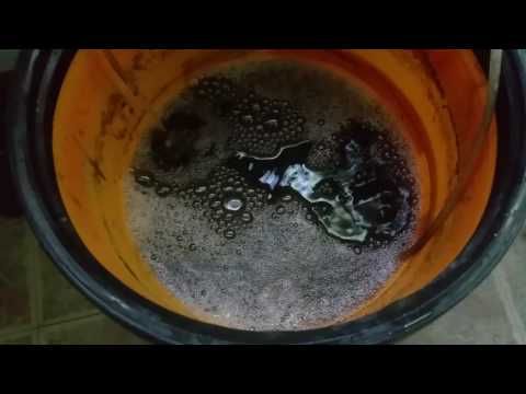 Making IMO 2 compost tea beneficial microbes EM1