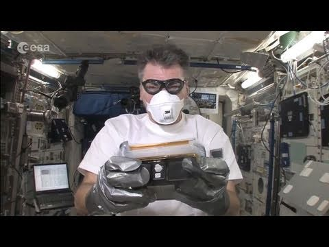 Greenhouse Experiment on ISS