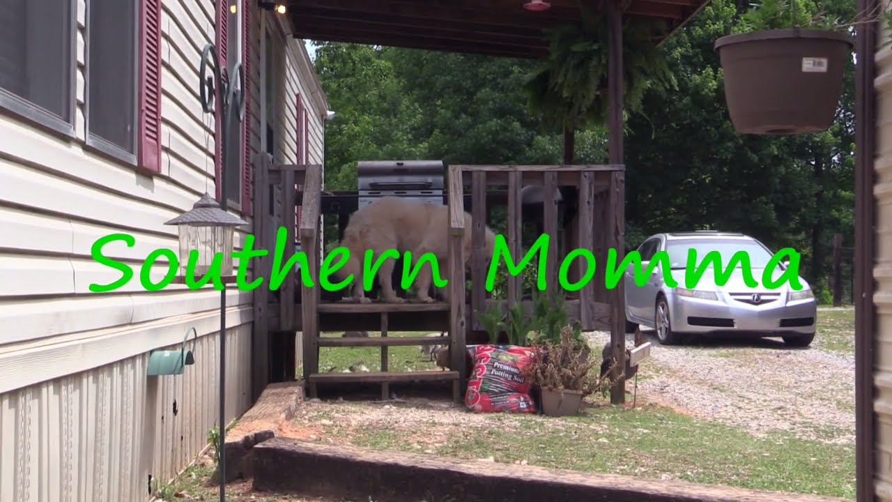 """Southern Momma An Summer Chores!"" #DarrenKnight #Comedy #Funny #Comedian #LOL #StandUpComedy"