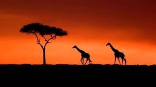 Traditional African Music Compilation: African Tribal Music & African Melodies