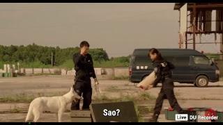phim hanh dong my, phim hanh dong Thai Lan, phim hanh dong toi pham