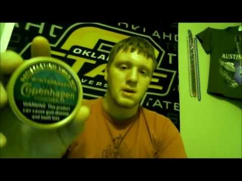 Copenhagen Wintergreen Pouches Review