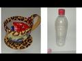 Como Fazer Xicara de Garrafa Pet -