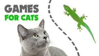 CAT GAMES ★ LIZARD on the SCREEN