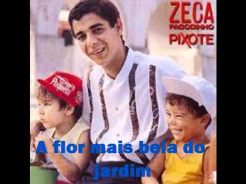 Cover image of song Pixote by Zeca Pagodinho