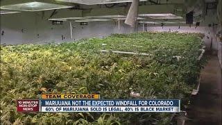 Marijuana not the expected windfall for Colorado