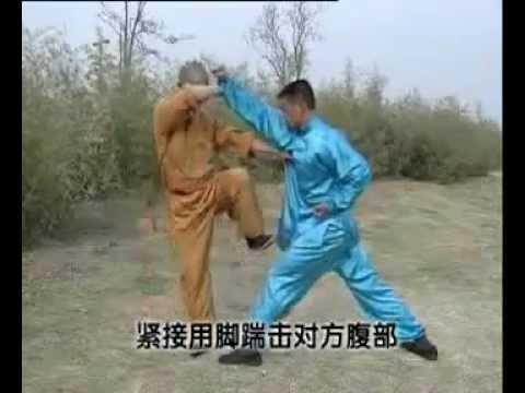 Shaolin 5 Combinations Kong fu (wu he quan), combat methods