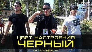 ЦВЕТ НАСТРОЕНИЯ ZOBI/ЦВЕТ НАСТРОЕНИЯ ЧЁРНЫЙ(ПАРОДИЯ)/STUDENT.ZP.TV