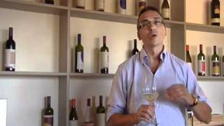 Vermentino - Video introduction by Cooperativa Legnaia