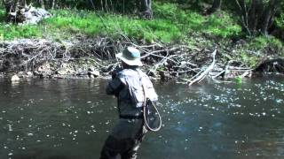French nymphing  Part 3  a tale of 1 trout pool and 3 methods