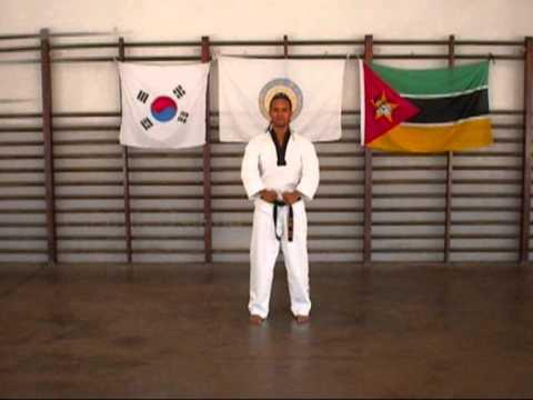 Taekwondo Poomsae 1 - 8 video