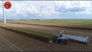 2018 Corn Silage Harvest at Convoy Dairy Farm - Part 1