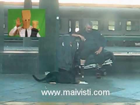 PENSIERO MAIVISTO 10