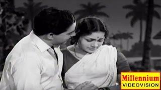 Pavappettaval | Malayalam Old Hit Full Movie | Sathyan & Kamaladevi