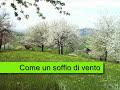 view Soffio Di Vento