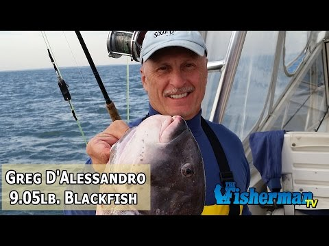 November 11, 2014 New Jersey/Delaware Bay Fishing Report with Chris Lido