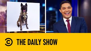 'Hero' Dog From al-Baghdadi Raid To Visit White House | The Daily Show With Trevor Noah