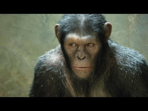 'Rise of the Planet of the Apes' Sequel Loses Director