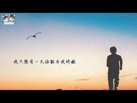 【TFBOYS王源 Roy】《骄傲》歌词版MV 频道自制【KarRoy凯源频道】