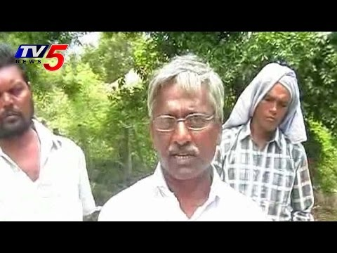 AP Farmers Happy Over Loan Wiaver | Annapurna : TV5 News
