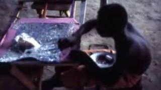Haiti 1975 1977 Part 2 Of 2