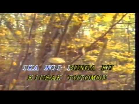 Kiusak Totomou   Julius Kassum Kadazandusun Widescreen video