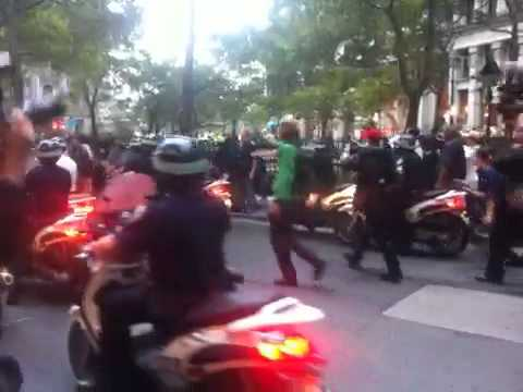 New York Observer: Cops and Protesters at Occupy Wall Street