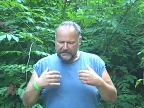 0 Raw Food Weight Loss 178 pounds! Dave the Raw Food Trucker VIDEO #4