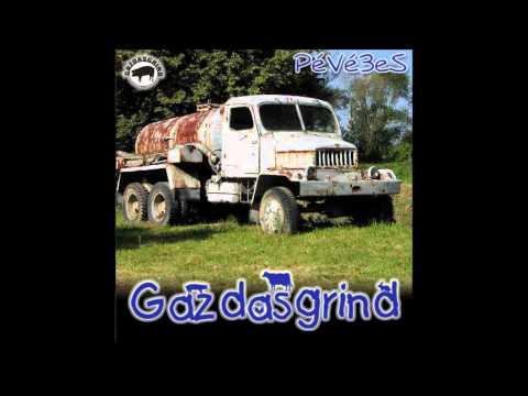 GAZDASGRIND - 08-Vetrieska - 2007 - PéVé3eS