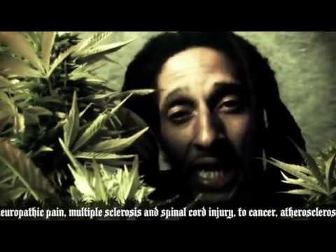 Thumbnail of video Julian Marley-Boom Draw