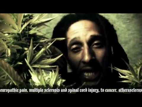 Julian Marley-Boom Draw Video