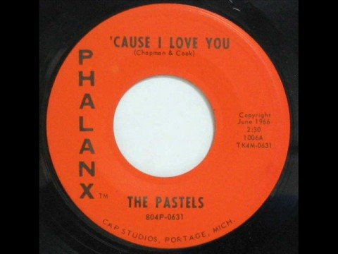 The Pastels - Cause I Love You - 1966 45rpm video