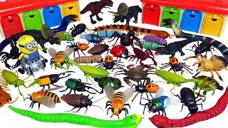 RC Bug Spider, Snake, Scorpion, ladybug,Turtle, CocKroach, hexbug RC Animals RC Insects Toys