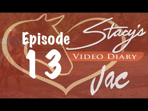 Stacy's Video Diary: Jac-Episode 13-Training Cycles in horse training: Physical and Emotional