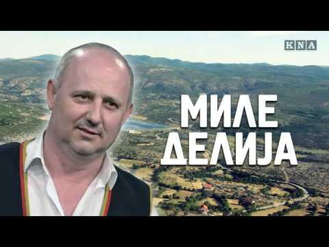 Mile Delija - Jelena (Ljepotica S Velebita) - (Official Audio 2016)