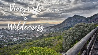 Adventures on the Cape | Pt 4 | South Africa Documentary