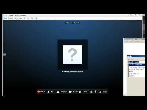 Skype-Show 07.02.2011