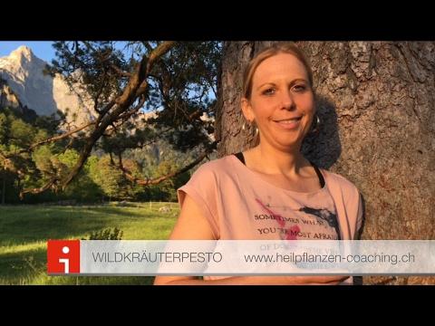 Wildkräuterpesto | Pflanzenheilkunde | Maienfeld | Rezept |