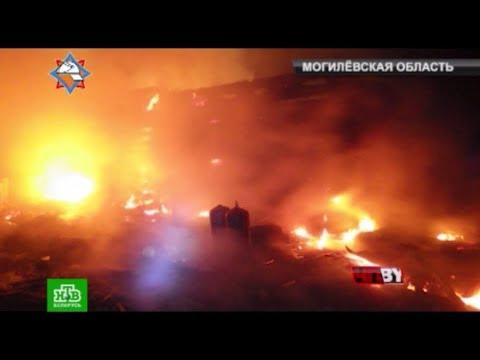 ЧП.BY Обзор МЧС: происшествия и пожары 13.11.2017