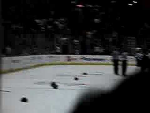Anaheim Ducks Columbus Andy McDonald Hit & Hnidy Fight Video