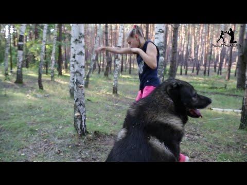 【動画】このロシアの9歳の女の子wwwwwwwwwww