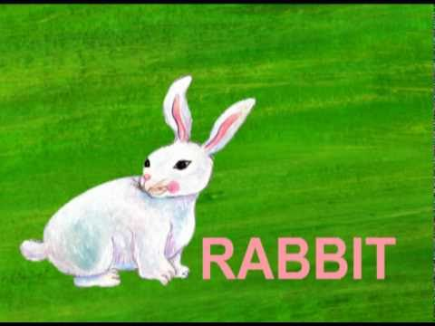r is for rabbit  hqdefault.jpg