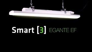 Smart [3] - Elegante, efficiente, versatile e sicura (it)