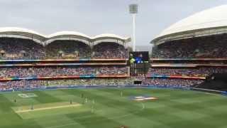 Virat Kohli 100 vs Pakistan at Adelaide Oval